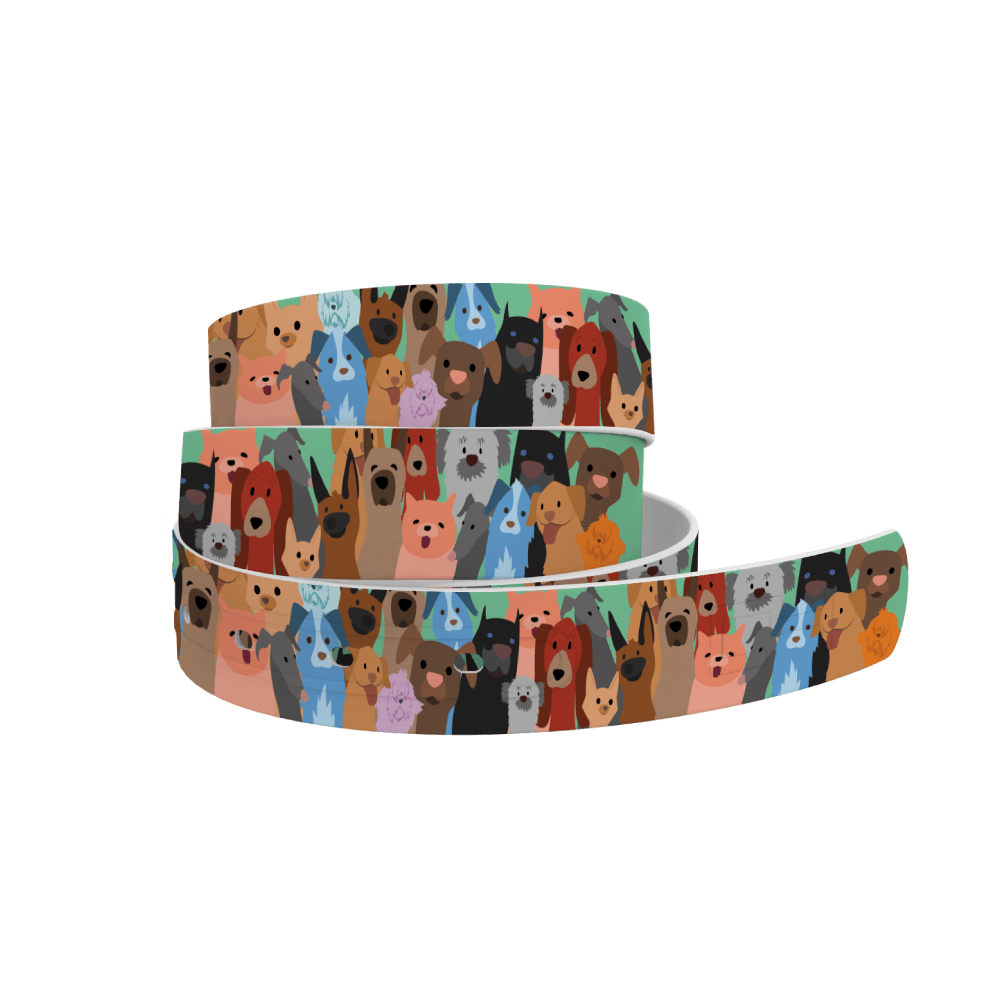 C4 Belts Belt Dog Party Belt - C4 equestrian team apparel online tack store mobile tack store custom farm apparel custom show stable clothing equestrian lifestyle horse show clothing riding clothes horses equestrian tack store