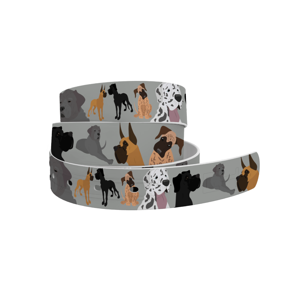 C4 Belts Belt Great Dane Belt by C4 equestrian team apparel online tack store mobile tack store custom farm apparel custom show stable clothing equestrian lifestyle horse show clothing riding clothes horses equestrian tack store