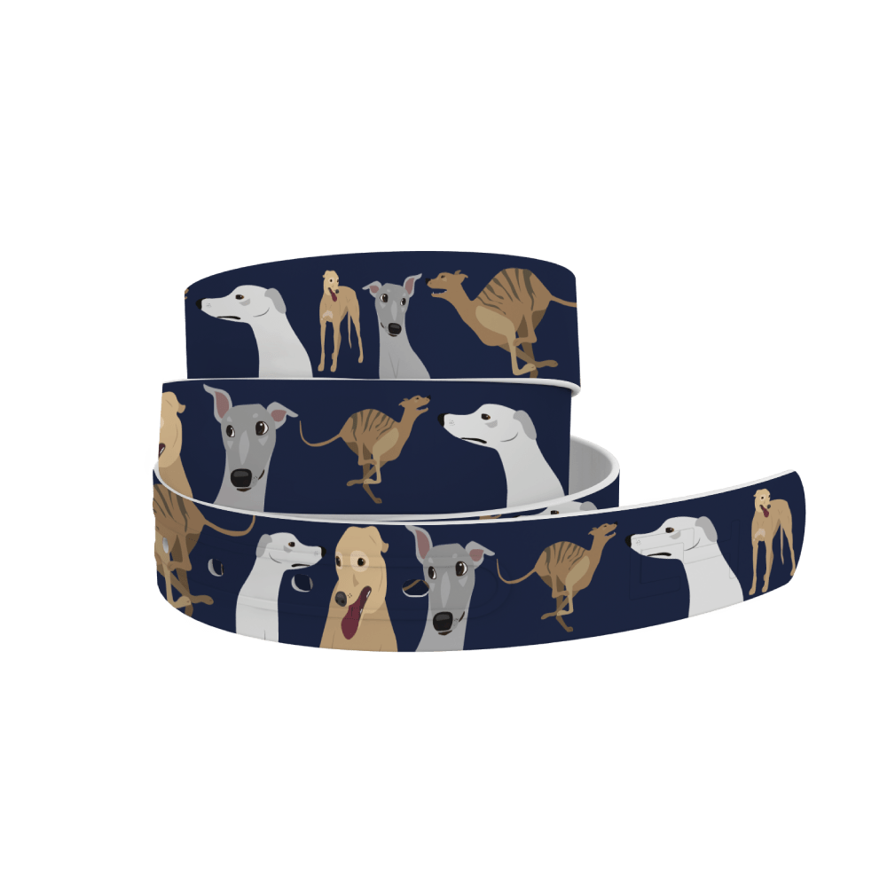 C4 Belts Belt Greyhound  Belt - C4 equestrian team apparel online tack store mobile tack store custom farm apparel custom show stable clothing equestrian lifestyle horse show clothing riding clothes horses equestrian tack store