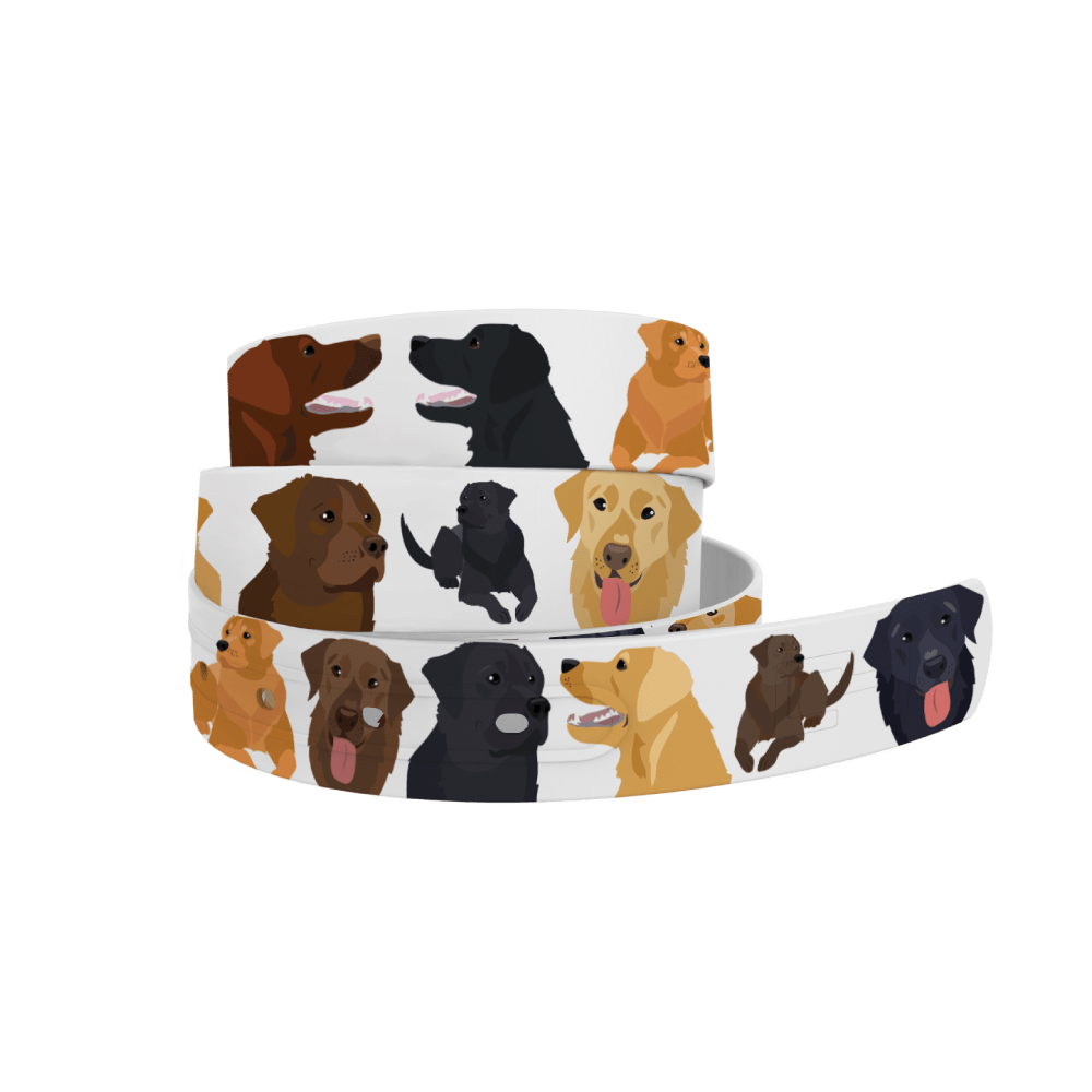 C4 Belts Belt All the Labs Belt - C4 equestrian team apparel online tack store mobile tack store custom farm apparel custom show stable clothing equestrian lifestyle horse show clothing riding clothes horses equestrian tack store