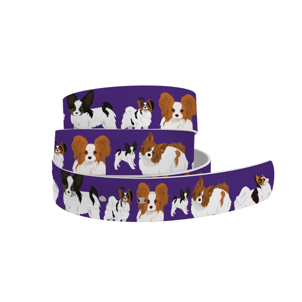 C4 Belts Belt Papillion Dog Belt - C4 equestrian team apparel online tack store mobile tack store custom farm apparel custom show stable clothing equestrian lifestyle horse show clothing riding clothes horses equestrian tack store