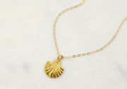 Gilded Shell Necklace