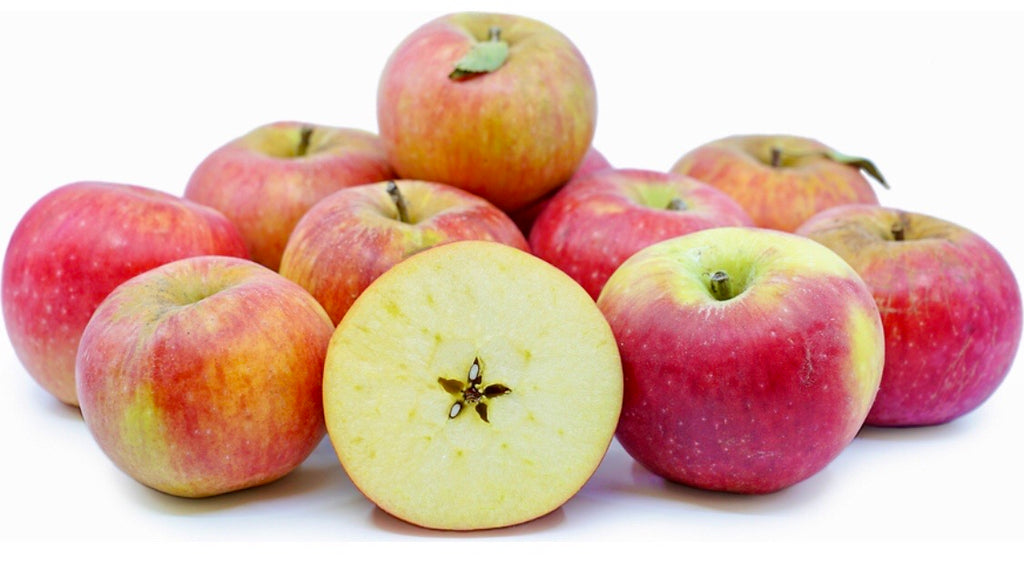 Hudson Valley Northern Spy Apples (per lb)