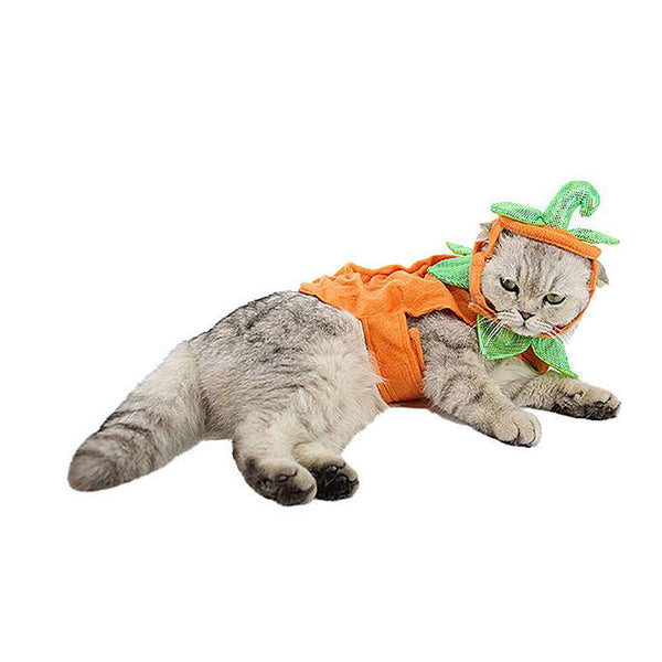 Winter Cat Costume Cute Cloth