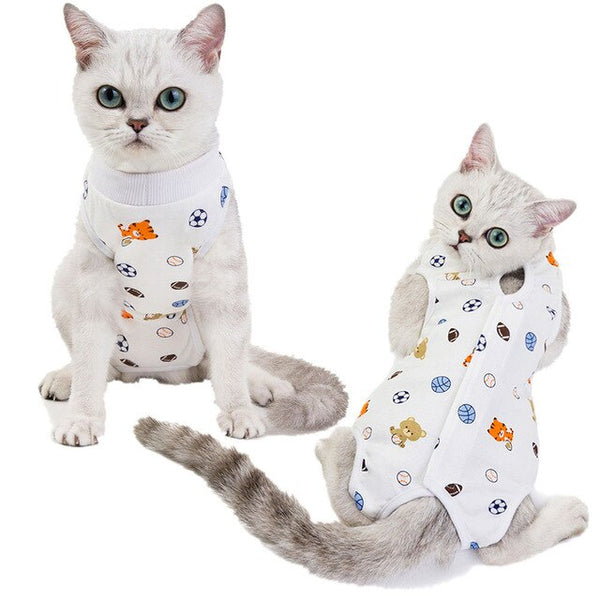Cat Recovery Suit Sterilization
