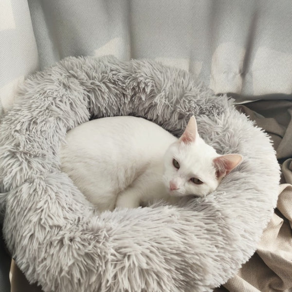 6 Sizes Round Plush Cat Bed