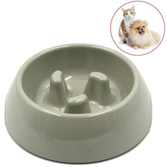 Print Slow Pet Cat Bowl