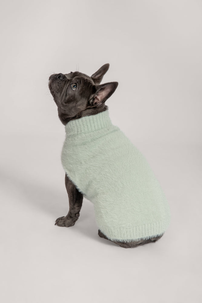 Stellie Fluffy Roll Neck Dog Jumper - Pistachio - MESHKI