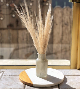 Natural Dried Pampas Grass with Vase - Big Sur Coastal Decor