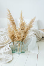 Load image into Gallery viewer, PAMPAS GRASS BUNDLE-Small - Big Sur Coastal Decor