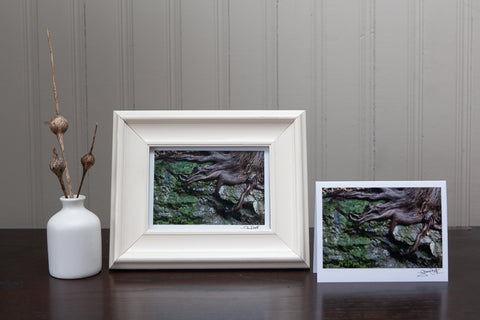 Landscape Art Cards for your gift giving needs, plus they are frameable!