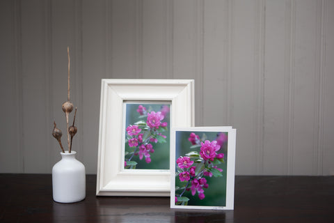 Photography Art Cards perfect for your gift giving needs plus BONUS they are frameable!