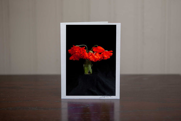 A beautiful photo greeting card of poppies in a vase  photo by Laura Cook of Vision Photography