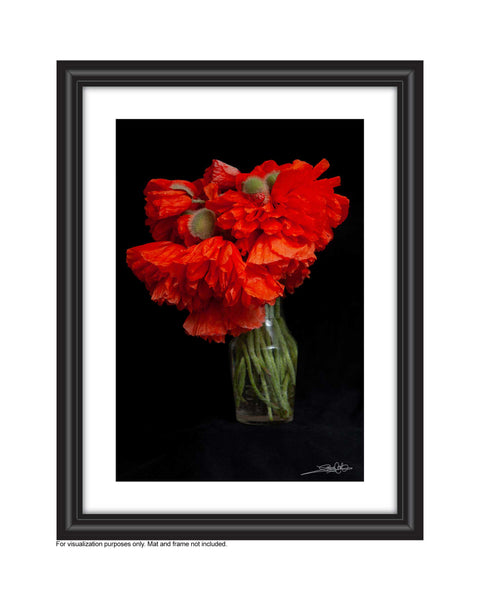 framed dramatic photo of poppies in a vase. Photo by Laura Cook of Vision Photography