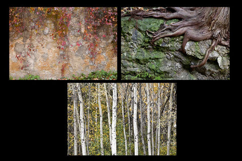 Greeting card pack featuring autumn images Photo by Cambridge Ontario Photographer Laura Cook of Vision Photography