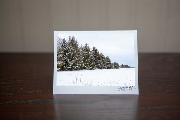 Photo greeting card featuring 'Frosted Pines' a photo of snowy pine trees making it the perfect winter scene for a holiday Christmas card Photo by Cambridge Ontario Photographer Laura Cook of Vision Photography