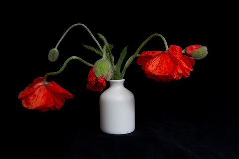 a photo of a bouquet of poppies . Photo by Laura Cook of Vision Photography