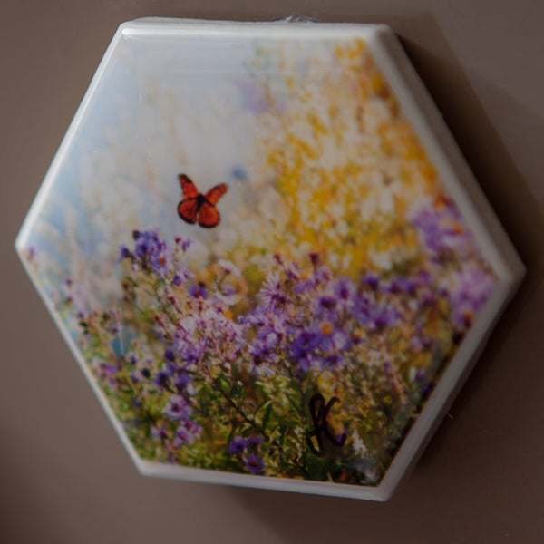 Start your art collection with these stunning magnets featuring Artist Laura Cook's Photograph