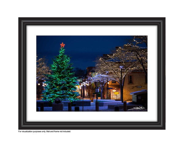Photo of Christmas Tree in Queens Square Cambridge  Photo by Cambridge Ontario Photographer Laura Cook of Vision Photography