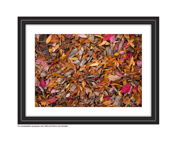 Photograph of yellow and pink Fall leaves on the ground Photo by Cambridge Ontario Photographer Laura Cook of Vision Photography