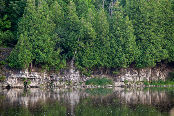 view of escarpment along the grand river view of Preston's linear trail photograph by cambridge ontario photographer laura cook