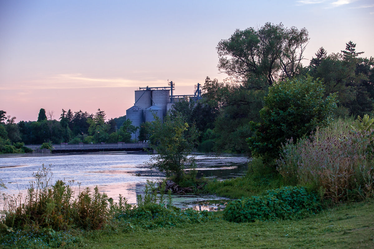 PH Milling in Preston Riverside Park Photo by Cambridge Ontario Photographer Laura Cook of Vision Photography