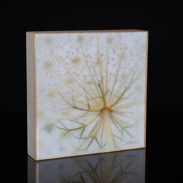 Wall Art Featuring Laura Cook's Photograph Dream, encased in resin