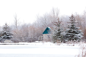 Churchill Park Cambridge in the Winter Photo by Cambridge Ontario Photographer Laura Cook of Vision Photography