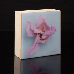 Wall Art Featuring Laura Cook's Photograph Twirl, encased in resin