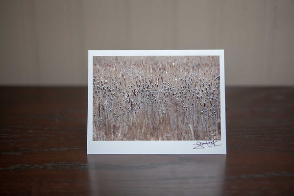 Christmas Greeting card featuring a nature image of a field of snow-capped  tease cones Photo by Cambridge Ontario Photographer Laura Cook of Vision Photography