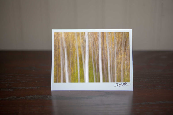 Photo Greeting card featuring 'Tranquil Trees' an abstract impressionism photograph of white birches in the vibrant fall forest Photo by Cambridge Ontario Photographer Laura Cook of Vision Photography
