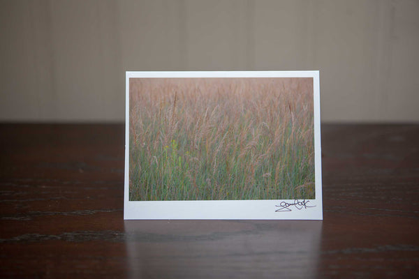 Photo greeting card featuring 'Wispy Flow' a photo of tall brown grasses gently blowing in the autumn breeze Photo by Cambridge Ontario Photographer Laura Cook of Vision Photography