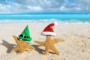Two orange starfish standing en pointe on a sandy beach. One starfish wears a red Santa hat whilst the other wears a green Elf hat. In the background is aqua sea with white breakers and grey clouds on the horizon