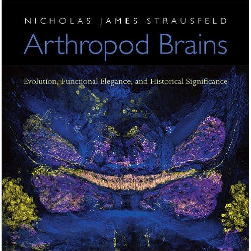 Arthropod Brains: Evolution, Functional Elegance, and Historical Significance