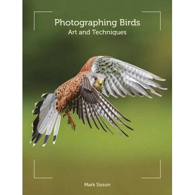 Photographing Birds: Art and Techniques