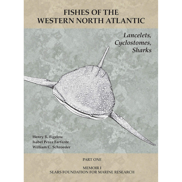 Lancelets, Cyclostomes, Sharks: Part 1 (Fishes of the Western North Atlantic)