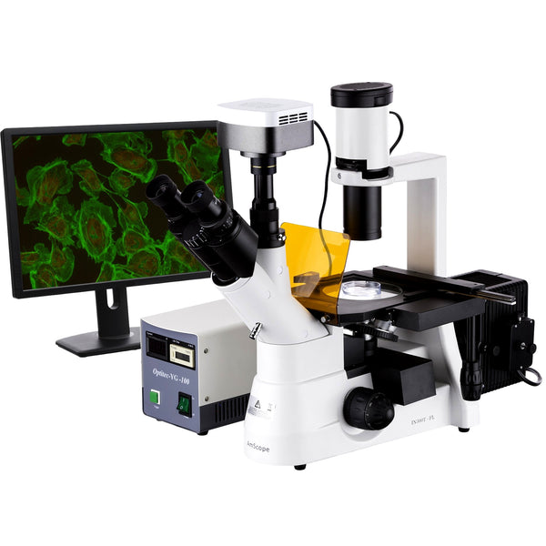 40x-1000x EPI Fluorescent Inverted Microscope + 5MP CCD Camera