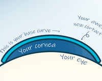 What is a contact lens base curve, and how does it affect you?