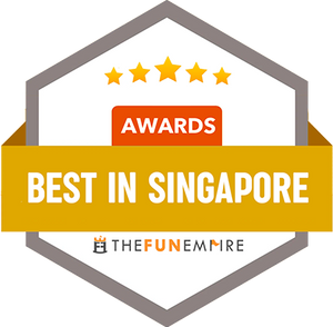 TheFunEmpire- Best Polymer Clay Earrings in Singapore