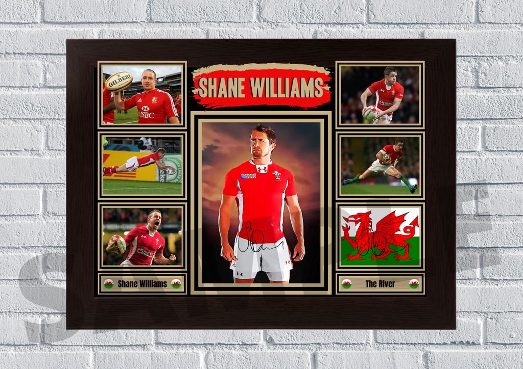 Shane Williams (Rugby) #89 - Signed print