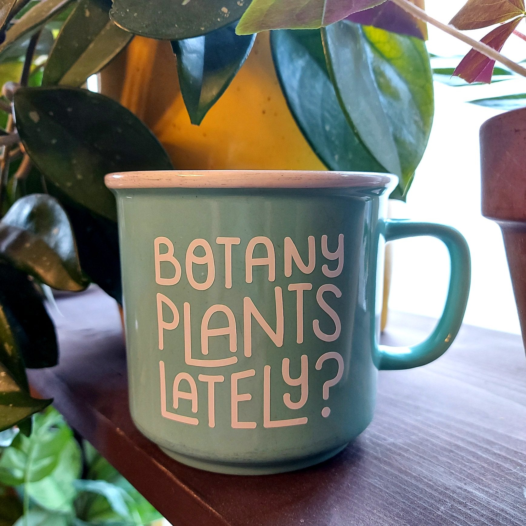 Botany Plants Lately?