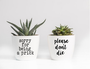 Sorry for Being a Prick | Please Don't Die