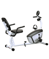 EZ RECUMBENT BIKE AGOS II