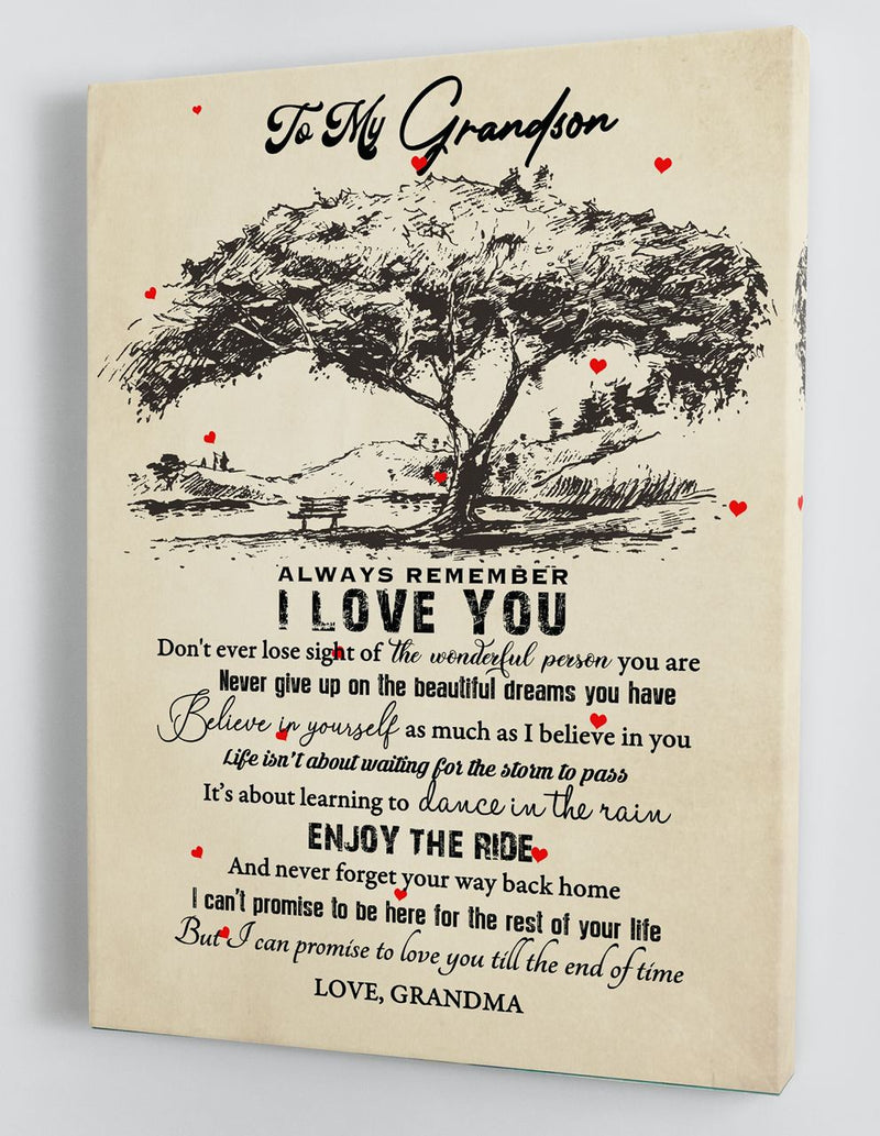 To My Grandson - From Grandma - Framed Canvas Gift GMS076