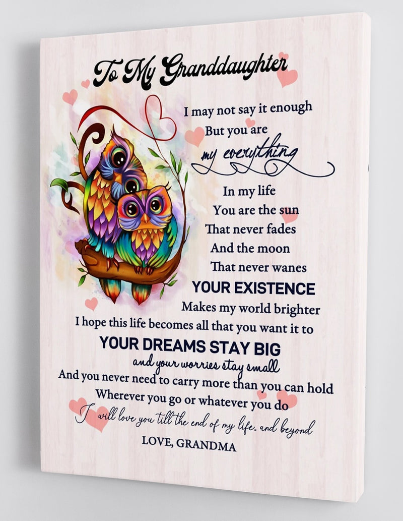 To My Granddaughter - From Grandma - Framed Canvas Gift GMD039