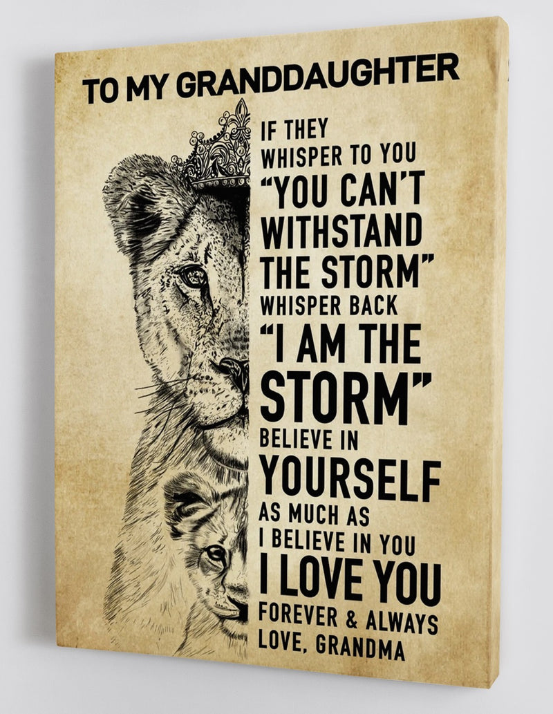 To My Granddaughter - From Grandma - Framed Canvas Gift GMD034