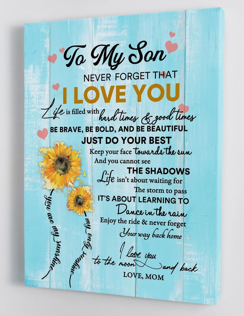 To My Son - From Mom - Framed Canvas Gift MS013