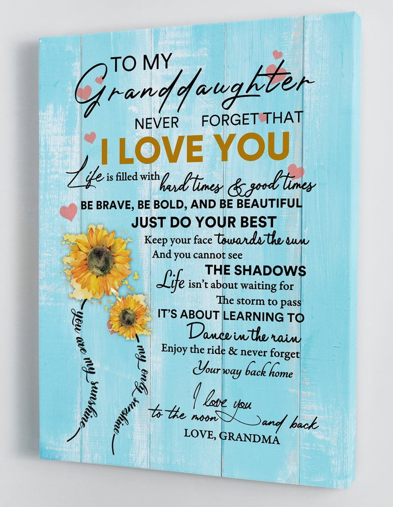 To My Granddaughter - From Grandma - Framed Canvas Gift GMD032