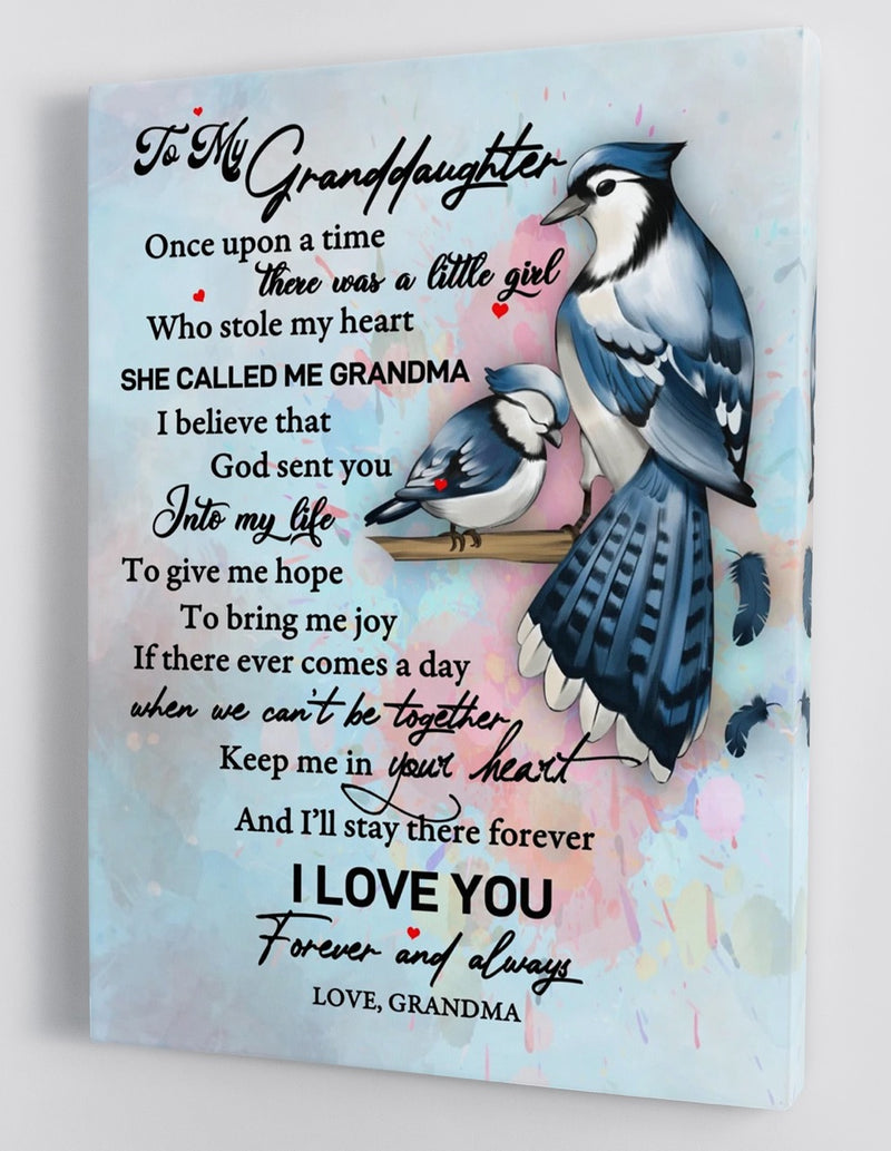 To My Granddaughter - From Grandma - Framed Canvas Gift GMD036