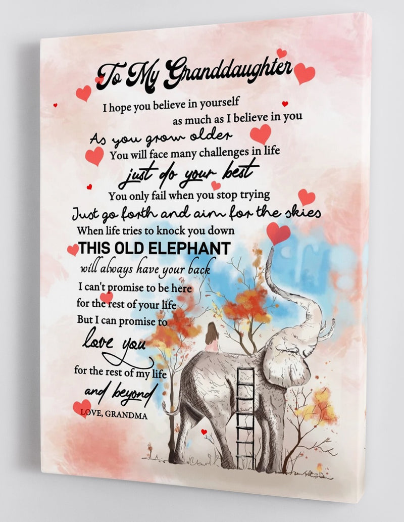 To My Granddaughter - From Grandma - Elephant Framed Canvas Gift GMD026